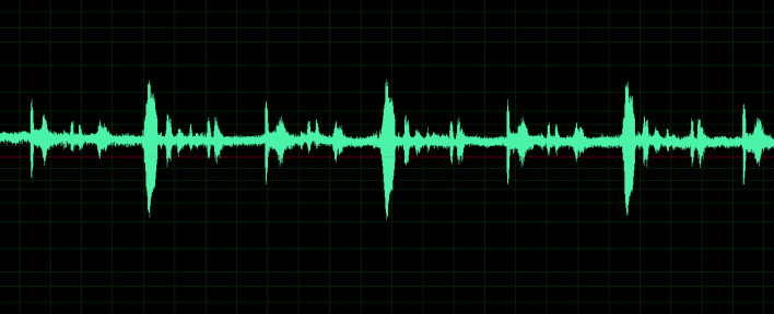 How to Reverse an Audio Clip in Adobe Audition