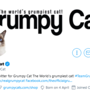 The internet pays tribute to Grumpy Cat